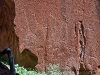 Rock engravings at Twyfelfontein Lodge