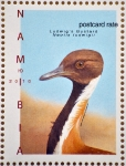 Ludwig's bustard
