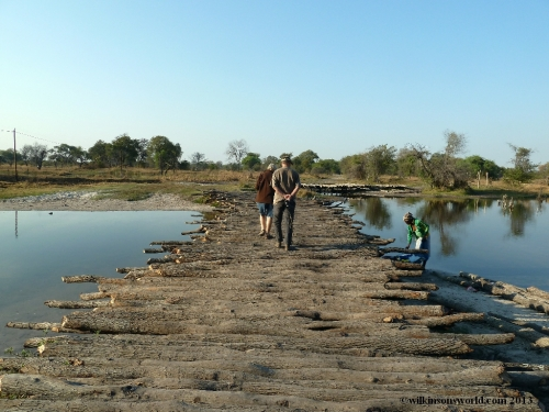 Bridge leading into Mamili National Park