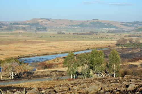 Farmlands near Underberg