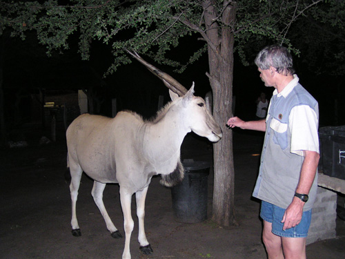 Rob and the Eland
