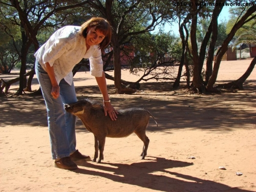 Jane with a hand-reared warthog
